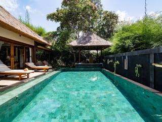 Rustic Luxury: Villa Om - Ubud vacation rentals