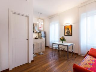Bright and spacious flat in Rome - Rome vacation rentals