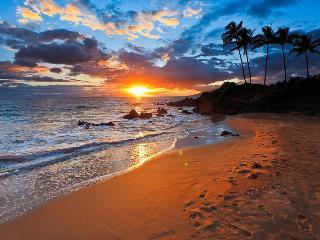 Romantic, Elegant, Sensual Retreat - Wailea vacation rentals