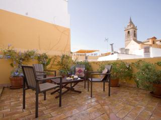Bamberg Duplex Terrace, Santa Cruz district 5 pax - Seville vacation rentals
