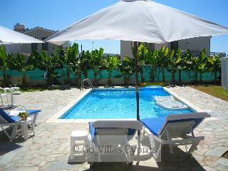 Seafront 3BR Villa, private pool, wifi, sea views - Kissonerga vacation rentals