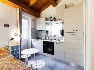 Cozy Rome vacation Condo with Internet Access - Rome vacation rentals