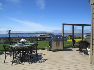 Prime Location+Romantic Seascape-Sunset Views-Quiet-Spa-FP-Wildlife-Spacious-5* - Bodega Bay vacation rentals