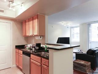 Nice 2 bedroom Arlington Condo with Internet Access - Arlington vacation rentals