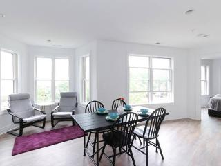 Modern DC 2BR Condo- walk to everything! - Washington DC vacation rentals
