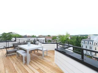 3 BR Boutique Loft & Private Rooftop - Washington DC vacation rentals