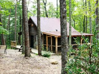 Honey Bear -Hot tub Cabin Near Tallulah Gorge - Tallulah Falls vacation rentals