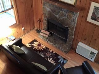 Mountain Mist Rustic Cabin - Near Tallulah Gorge - Tallulah Falls vacation rentals