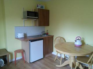 Bright Belfast Studio rental with Internet Access - Belfast vacation rentals