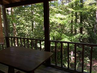 Lady Slipper - Cozy Cabin near Tallulah River - Tallulah Falls vacation rentals