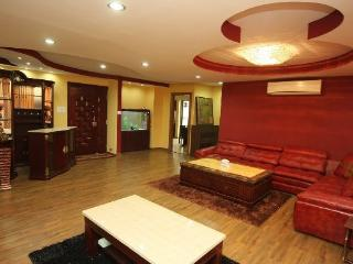 3bd luxury penthouse apartment - Kathmandu vacation rentals