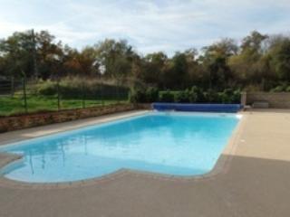 Gite rural les alpagas du Layon piscine chauffée - Thouarce vacation rentals