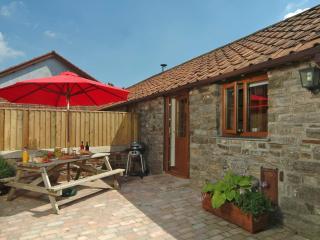 Courtyard Cottage - Barnstaple vacation rentals