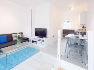 Super New Flat Euston/Kings Cross - London vacation rentals