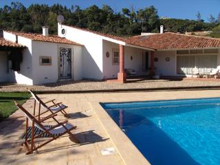 Gorgeous Villa with Internet Access and Satellite Or Cable TV - Rio Maior vacation rentals