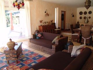 Gorgeous 4 bedroom Rio Maior Villa with Internet Access - Rio Maior vacation rentals