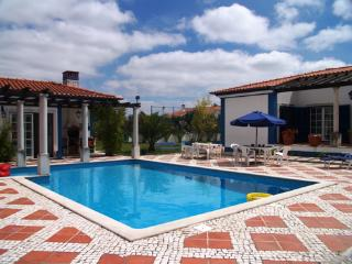 Lovely 5 bedroom Cartaxo Villa with Internet Access - Cartaxo vacation rentals