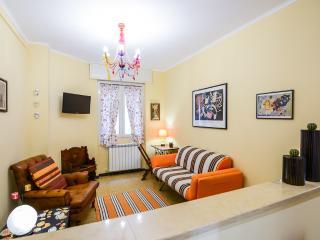 Delizioso, comodo appartamento, ristrutturato 2015 - Vallecrosia vacation rentals