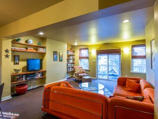 Amazing Apartment in Ideal Location - Buffalo vacation rentals