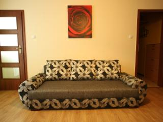 Apartment Economy - Wroclaw vacation rentals