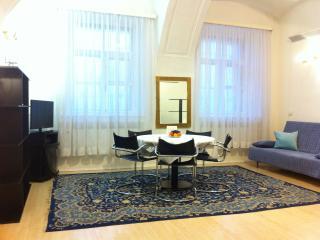 Cozy 1 bedroom Condo in Saint Petersburg - Saint Petersburg vacation rentals