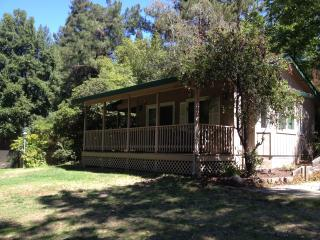 Pool house retreat among redwoods! - Fair Oaks vacation rentals