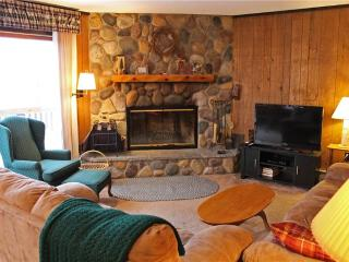Located at Base of Powderhorn Mtn in the Western Upper Peninsula, A Delightful Home with Gorgeous Fieldstone Fireplace & Sauna - Bessemer vacation rentals