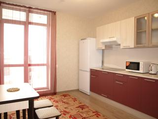Cozy 1 bedroom Belgorod Condo with Internet Access - Belgorod vacation rentals
