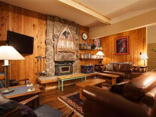 Storm Meadows Townhouse 29 - Steamboat Springs vacation rentals