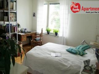 Nice Flat with a View over the Water - 6293 - Stockholm vacation rentals