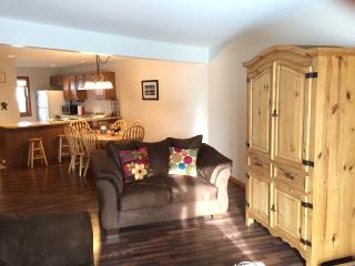 COZY CONDO NESTLED AGAINST FOREST, SPECIAL RATE! - Silverthorne vacation rentals