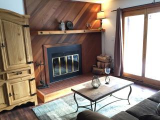 Cozy 2 bedroom Condo in Silverthorne - Silverthorne vacation rentals