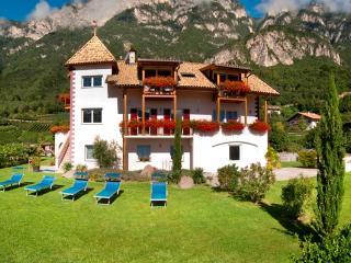 Neuerbautes Haus mit Blick auf's Etschtal u. Berge - Cortaccia sulla strada del vino vacation rentals