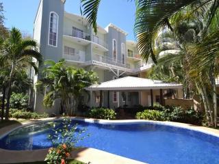 Nice Condo with Internet Access and A/C - Tamarindo vacation rentals