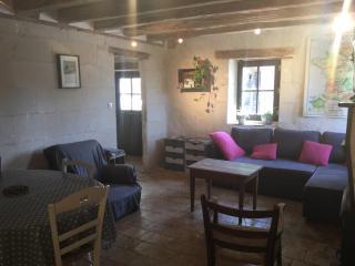 Petite maison Tourangelle 5 personnes - Blere vacation rentals