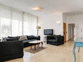 3 BR BEST LOCATION PENTHOUSE 5 MIN GORDON  BEACH - Tel Aviv vacation rentals