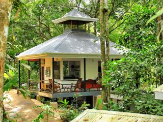Your Private Suite in the Middle of the Jungle ! - Playa Hermosa vacation rentals