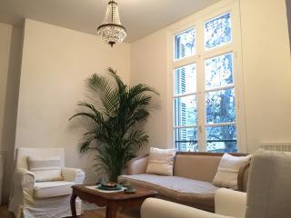 Elegant apartment in the heart of historic Saumur - Saumur vacation rentals
