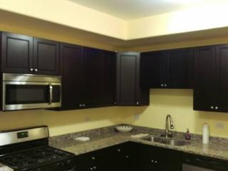 Furnished In Beautiful Roscoe Village - Chicago vacation rentals