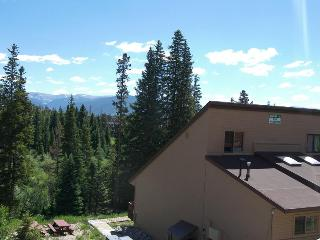 Buffalo Ridge 2 bed Loft - Silverthorne vacation rentals