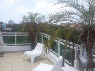ROOFTOP PENTHOUSE -  EXCELLENT LOCATION - GAZCUE - Santo Domingo vacation rentals