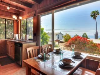 Cozy House with Television and Water Views - Encinitas vacation rentals