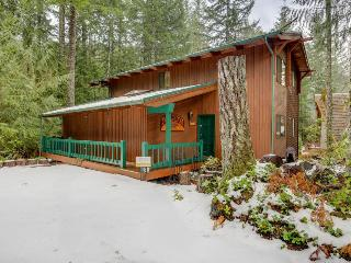 A woodland lodge with a private hot tub & media room! - Rhododendron vacation rentals