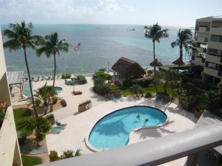 Gorgeous 2 bedroom Islamorada Condo with Internet Access - Islamorada vacation rentals