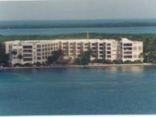 THE PALMS OF ISLAMORADA - Islamorada vacation rentals