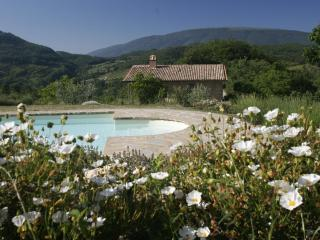 Casa Rosa - Lorenzetti, one bedroom, sleeps 2 - Assisi vacation rentals