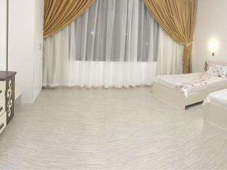Perfect Studio with Internet Access and A/C - Abu Dhabi vacation rentals