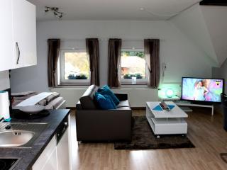 Komfort & Luxus für bis zu 3 Personen - Schleiden-Gemünd vacation rentals
