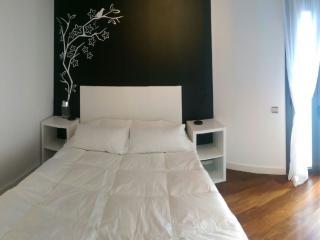 "Great Double Room with ""en-Suite"" Private Bathroom - Barcelona vacation rentals"