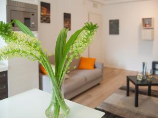 Santa Sofia Apartments - Pedrocchi Apartments - Padua vacation rentals